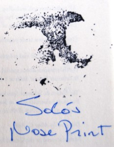 Solo signed my copy of What the Dog Knows with his nose print.