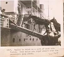 Mules boarding a ship.