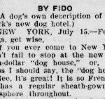 Fido as a newspaper author