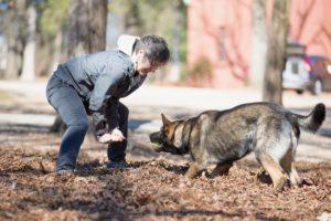 Cat Warren training her cadaver dog, Jaco.