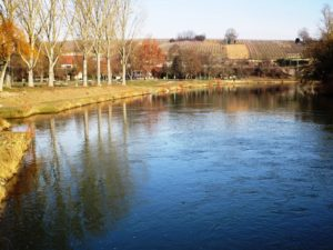 The banks of the Neckar where Regiswindis was probably found.